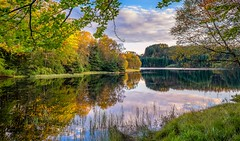 Early fall, Norway (Vest der ute) Tags: g7x norway rogaland haugesund djupadalen water waterscape landscape lake reflections mirror trees fall grass tree sky clouds fav25 fav200