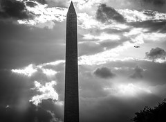 2017.09.17 DC People and Places Washington, DC USA 8850