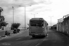 Micro - La Lisera (cristian.villazón.valencia) Tags: micro bus locomoción vehículo calles carreteras playa lisera arica chile parinacota regiones región xv provincias norte costa día blanco negro bn black white bw apaisado nubes nubosidad camino