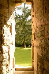 DSC_1692 (amoamas07) Tags: oldwardourcastle englishheritage castle ruin