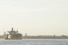 r_170817128_beat0050_a (Mitch Waxman) Tags: killvankull newjersey newyorkcity newyorkharbor statenisland tugboat newyork