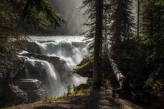 Les chutes Athabasca (mgirard011) Tags: jasper alberta canada ca 300faves