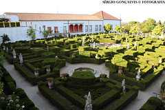 Green its cool (SérgioGonçalves@Fotografia) Tags: portugal canon nature natur 70200 7d green garden old classic retro cool