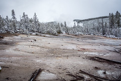 Yellowstone National Park - Winter-1 (hotcommodity) Tags: yellowstonenationalpark winter snow ice frozen grandprismaticsprings hotsprings geothermal nature wilderness mist steam clouds grey spring buffalo bison