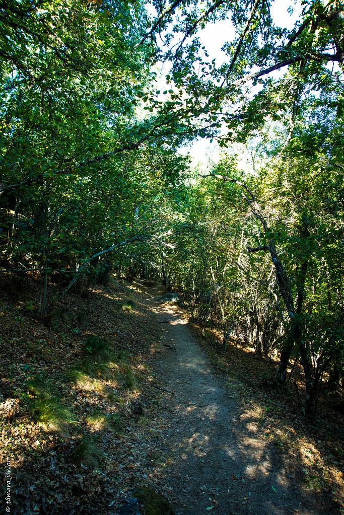 09.- 2017.- Caminhada - Sotillo de Sanábria-Cascata e Laguna de Sotillo-Sotillo (63)