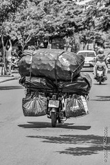 (fmzs2008) Tags: load bulk vacation verreoosten fareast vietnam asia fiets bike hoian transport vervoer hoi an trip road french harbour azie south east vakantie 2017 holiday old