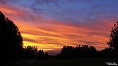P1390461 (Christen Ann Photography) Tags: 2016 carterton christmasholidays december2016 landscape nature newzealand sun sunset wairarapa