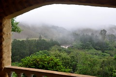 sim, frio e chuva... quero soooool!!!!! (Ruby Ferreira ®) Tags: fog varanda balcony cold winter trees mataatlântica árvores rain chuva