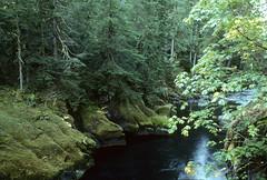 Anglų lietuvių žodynas. Žodis mackenzie river reiškia mackenzie upės lietuviškai.