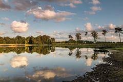Reflection in eveninglight (Mariannevanderwesten) Tags: reflection reflectie rozenven roosendaal eveninglight avondlicht bos bomen ven nikon clouds wolken
