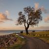 Love (John_Armytage) Tags: shoalbay love sunset nelsonbay australia johnarmytage sonya7r2 sony1635 portstephens