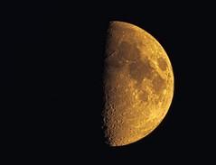 Moon (piranhabros) Tags: moon halfmoon astrophotography sky night mirrorlens 500mmrokkor craters