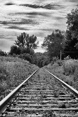 170829-05 La voie (clamato39) Tags: track voieferrée noiretblanc blackandwhite bw monochrome ciel sky clouds nuages provincedequébec québec canada