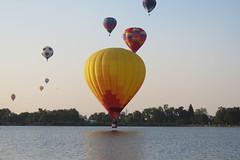 Close to Touchdown! (Patricia Henschen) Tags: balloonliftoff balloonclassic hotairballoon prospect lake memorialpark park prospectlake colorado coloradosprings downtown laborday labordayliftoff balloon balloons morning dawn
