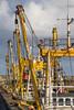 Beam Trawlers (ShrubMonkey (Julian Heritage)) Tags: beamtrawlers boomtrawlers stevenson quay quayside harbour newlyn coast nautical port sea seaside fishingboats boats