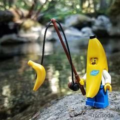 Nice Catch!!  #lego #legos #legolife #legoisme #legopics #brickworld #bricks #bricksinfocus #toyslagram #toyslagram_lego #toypics #toyphotography #toyphoto #instadaily #instalego #afol #afolclub #itsreal #awesomized #banana  #fishing #labordayweekend #gon (tronsoda) Tags: afolclub banana toyphotography gonefishing afol toypics itsreal fruity instadaily awesomized bricksinfocus fishing toyslagram legopics toyphoto toyslagramlego legos labordayweekend fruitpics brickworld bricks instalego legolife lego legoisme