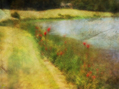 Cardinal flowers by the lake. (jeanne.marie.) Tags: cardinalflowers blur lake summer textured iphoneography iphone7plus wildflowers