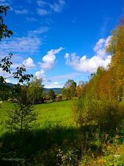 A little piece of Norway (evakongshavn) Tags: scenery serenity serene landscapephotography landscape landschaft landskap beautyinnature natur nature naturnature naturbilder naturephotography naturelovers naturaleza naturphotography bluegreen blue green sky skyer clouds
