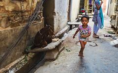 El callejon (Nebelkuss) Tags: india rajasthan jaipur thepinkcity laciudadrosa callejon alley callejeras street niños children cabra goat fujixpro1 fujinonxf23f14
