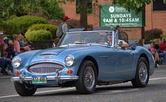 Light Blue Austin Healey (swong95765) Tags: car sportscar convertible parade powderblue drive old pristine classic ragtop