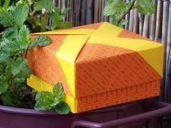 20160930_175934 (musitine) Tags: origami box schachtel