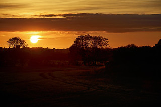Daw End Branch Sunset, Walsall 16/07/217