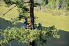 EOG-26.jpg (Joel Spooner Photography) Tags: arblife arborist bc expeditionoldgrowth joelspooner joeliphoto climbtrees exploretrees explorebc inspire learntoclimb oldgrowth treeclimbing