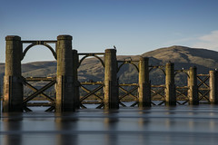 The Throsk Swing Bridge, with the Ochill Hills in the background. (iancook95) Tags: