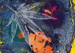 Cannabis Understands - 2017 (Jurassic Blueberries) Tags: marijuana maryjane paypal dogma piano keys silence me you us everything cannabis impression art painting mixedmedia wolf youth android ios waves instagram price world reaction furnace brick pizza piercing medical buffering voyager vip compass minds unite ground right almost ranch toes pollen academy body doctor surprise report issue clean scar barking artwork puravida laser ink care city feelings night time email airplane bus promotion movie acid cartoon sugar filbert coconut gray jello rainbow drums soft