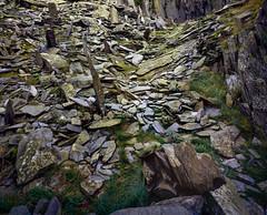 Castle Crag, Velvia 50 5x4 (CactusD) Tags: castlecrag castle crag borrowdale slate quarry slatequarry lakedistrict lakes lake district england cumbria nikon d800e movements fx uk unitedkingdom gb united kingdom greatbritain great britain nationalpark national park fuji film fujifilm fujichrome velvia velvia50 5x4 4x5 85mmf28pcemicro 85mm f28 pce micro macro linhof technikardan tks45 s45 nikkor sw75mmf45 75mm f45 largeformat large format detail details texture textures september digitized