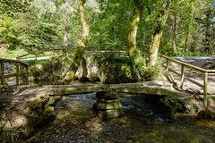 Lady Vale Clapper Bridge, Cardinham Woods (RoyReed) Tags: cardinham bridge clapperbridge river stream trees woods england unitedkingdom gb cornwall