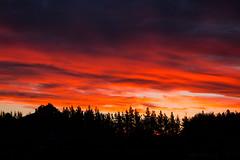 20170929_8763_EOS M-55 Sunset (johnstewartnz) Tags: sunset canon canonapsc apsc eos eosm 1855mm 1855 efm1855mmf3556isstm evil 100canon unlimitedphotos yabbadabbadoo yabbadabadoo fullframe nocrop tlp