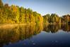 DSC_4231 (vargandras) Tags: lake water sunlight reflection tree autumn fall foliage yellow green blue nikkor 1685mmf3556gvr reed