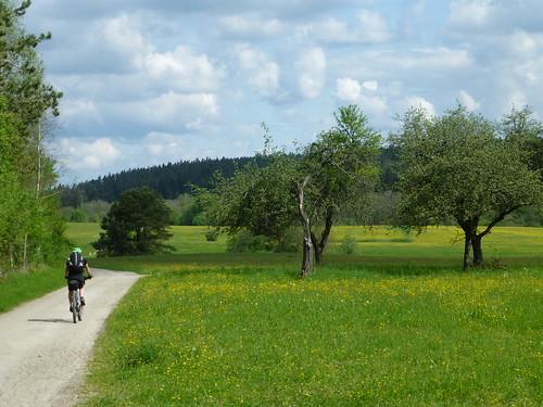 Am Pegnitzradweg