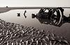 Submarine wreckage (cje2002) Tags: aberlady cameras developer europe lothians pentaxmz5n perceptol12 places randomfilmshots scotland public