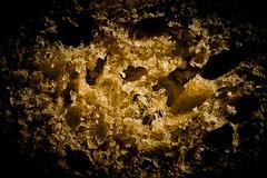 Macro Mondays Bread (rondoudou87) Tags: pentax k1 macro macromondays close closer smcpentaxdfa100mmf28macrowr pain bread hmm ombre shadow color couleur contrast détail detail jaune yellow noir black abstrait abstract closeup closeshot makro digital