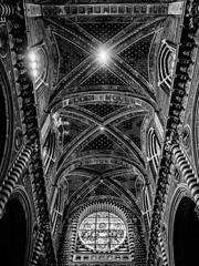 _7087916-Modifica (FloBue) Tags: 2017 siena toscana toskana tuscany kirche church chiesa blackandwhite biancoenero schwarzweiss silverefexpro highcontrast kontrast contrast contrastoalto