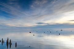 Arès (Mav'31) Tags: 1750mm 2016 arès bassindarcachon d5100 jéromevinçonneau mav31 sigma coucherdesoleil décembre f28 paysage portostréicole sunset