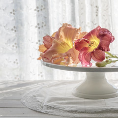 (donna leitch) Tags: pieplate plate lillies flowers lace drapes curtains stilllife tabletop