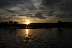 Sonnenuntergang / Sunset, Rheingau (herbert@plagge) Tags: sonnenuntergang rheinfähre rhein abend himmel wolken natur deutschland germany rhine ferry evening sunset nature