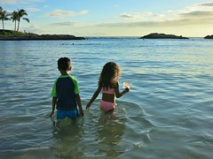 08-28-17 Family Vacation 10 (Leo & Luna) (derek.kolb) Tags: hawaii oahu koolina family