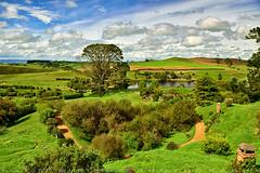Sun Shine in Hobbiton Movie Set (T Ξ Ξ J Ξ) Tags: newzealand hobbiton hobbitonmovieset matamata d750 nikkor teeje nikon2470mmf28 lbwarmingcpl hobbit house hole home green hills