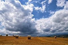 Orage à l'horizon (Croc'odile67) Tags: nikon d3300 sigma contemporary 18200dcoshsmc paysage landscape nature nuage ciel cloud sky campagne rundball