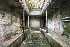 Atlantis Rising (suspiciousminds) Tags: urbex urbanexploration decay abandoned pool bathhouse bath thermalbath publicbath turkishbath 1800s