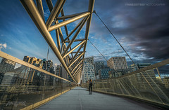 Oslo, Norway 0102 - City Bridge (Sony A6000, Canon 10-18) (IP Maesstro) Tags: bridge architecture transport oslo norway city hdr ipmaesstro