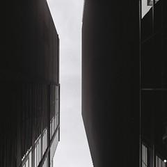 Non (Yosh the Fishhead) Tags: rollei rolleiflex rolleiflexautomat rolleiflexautomatmx carlzeiss carlzeissjena carlzeissjenatessar carlzeissjenatessar75mmf35 tessar film fujifilm fujifilmacros100 acros100 blackwhite bw blackandwhite monochrome architecture building tlr neopan tokyo japan 120 120film filmphotography twinlensreflex mediumformat squareformat square 6x6