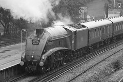 Steam to Weymouth (David Blandford photography) Tags: 60009 union south africa 0843 london victoria weymouth dorset coast express