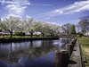 Huddy Park, Toms River, NJ (erhewitt50) Tags: huddypark tomsriver njnewjersey oceancounty spring