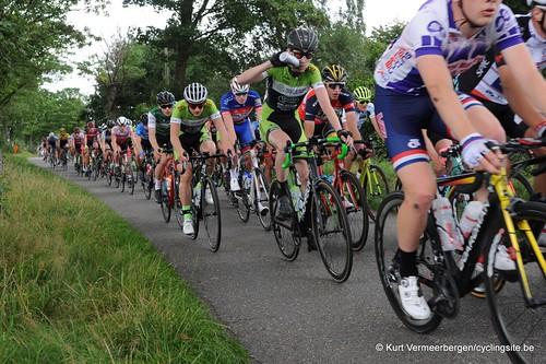 Omloop Vlaamse gewesten (227)