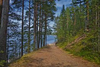 Sweet summer memories. 🌻🌲🌹 Konevitsa, Laatokka
